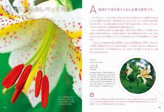 植物見開き.jpg