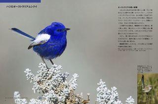 b_6-7.jpg