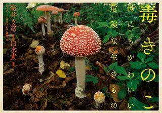 blog_photo_0_cover.jpg