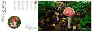 blog_photo_1.jpg