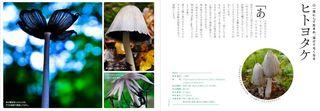 blog_photo_4.jpg